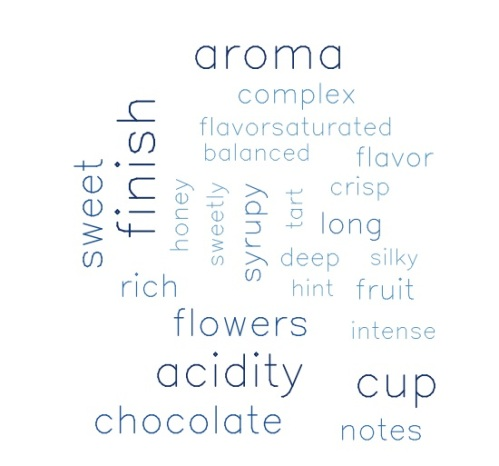 Most frequent words describing top rated coffees.
